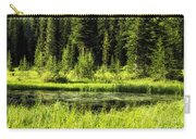Wallowas - No. 9 Carry-all Pouch