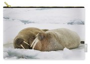 Walrus Male And Female On Ice Floe Carry-all Pouch