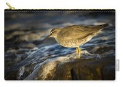Wandering Tattler Carry-all Pouch