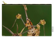 Wandering Violin Mantis Carry-all Pouch