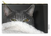 Warm Kitty Carry-all Pouch