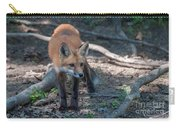 Wary Fox Carry-all Pouch by Bianca Nadeau