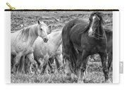 Wary Stallion Carry-all Pouch