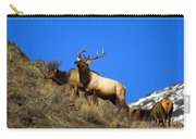 Watchful Bull Carry-all Pouch