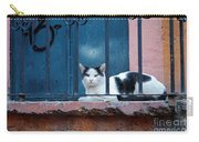 Watchful Cat, Mexico Carry-all Pouch
