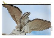 Watchful Eagle Carry-all Pouch