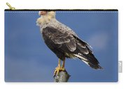 Watchful Eyes Crested Southern Caracara Carry-all Pouch