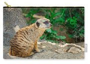 Watchful Meerkat Carry-all Pouch
