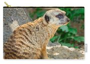 Watchful Meerkat Vertical Carry-all Pouch