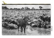 Water Buffaloes-black And White Carry-all Pouch