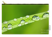 Water Drops On Grass Blade Carry-all Pouch by Elena Elisseeva