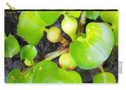 Water Plants 1 Carry-all Pouch
