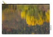 Water Reflections Abstract Autumn 2 B Carry-all Pouch