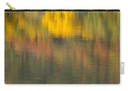 Water Reflections Abstract Autumn 2 C Carry-all Pouch
