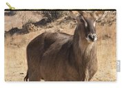 Waterbuck Male V2 Carry-all Pouch