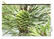 Watercolor Of Ripening Pine Cone Carry-all Pouch