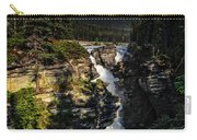 Waterfall And Mountain In Jasper Carry-all Pouch