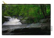 Waterfall At George W Childs Park Carry-all Pouch