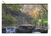 Waterfall Autumn Carry-all Pouch