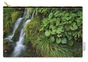 Waterfall Egmont Np New Zealand Carry-all Pouch