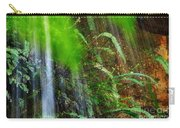 Waterfall Over Ferns Carry-all Pouch
