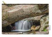 Waterfall Under Fallen Log Carry-all Pouch