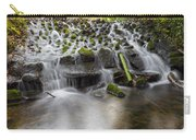Waterfalls In Marlay Park Carry-all Pouch