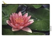 Water's Edge Carry-all Pouch by David and Carol Kelly