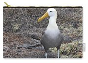 Waved Albatross Diomeda Irrorata Carry-all Pouch