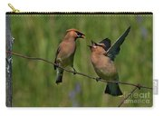 Waxwing Love.. Carry-all Pouch by Nina Stavlund