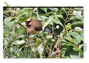 Waxwing Meal Carry-all Pouch