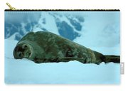 Weddell Seal Carry-all Pouch