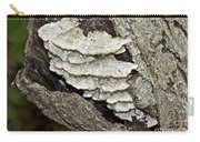 Weep No More My Baby - Bracket Fungi - Tyromyces Balsamea Carry-all Pouch