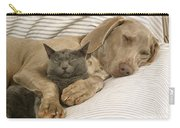 Weimaraner Asleep With Cat Carry-all Pouch