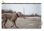 Weimaraner Points On Cherry Beach Carry-all Pouch