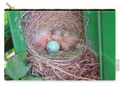 Welcome To The World - Hatching Baby Robin Carry-all Pouch
