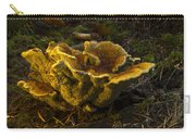 Well Lit Fungi Carry-all Pouch
