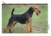 Welsh Terrier Dog Carry-all Pouch