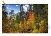 West Fork Wonders  Carry-all Pouch by Saija  Lehtonen