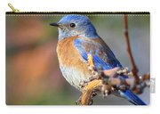 Western Bluebird Profile Carry-all Pouch