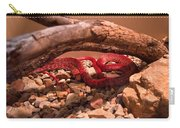 Western Coachwhip Red Phase Carry-all Pouch