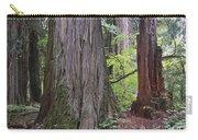 Western Red Cedar Grove Carry-all Pouch