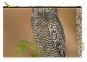 Western Screech Owl Juvenile Utah Carry-all Pouch