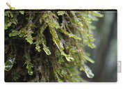 Wet Redwood Branches Carry-all Pouch