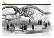 Whale Skeleton, 1866 Carry-all Pouch