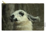 What So Funny Carry-all Pouch