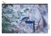 Where Did Spring Go Carry-all Pouch