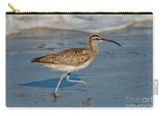 Whimbrel Running Carry-all Pouch