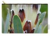 White And Brown Protea  Carry-all Pouch