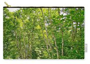 White Birch Along Rivier Du Nord Trail In The Laurentians-qc Carry-all Pouch